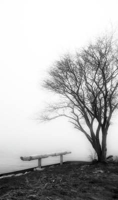 Photograph - Foggy Morning 1 by Allyson Schwartz