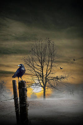 Surrealism Royalty-Free and Rights-Managed Images - Foggy Orange Sunrise with Ravens by Randall Nyhof