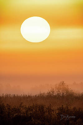 Dan Beauvais Royalty-Free and Rights-Managed Images - Foggy Sunrise 9564 by Dan Beauvais
