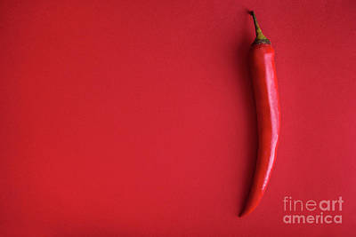 Royalty-Free and Rights-Managed Images - Food background flat lay. Red hot chili pepper on red background by Jelena Jovanovic