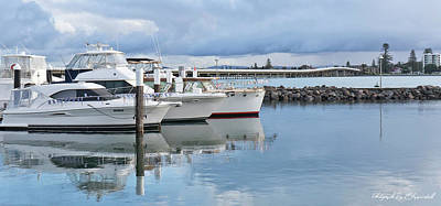 Moody Trees - Forster Marina 5710 by Kevin Chippindall