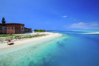 Amy Hamilton Animal Collage - Fort Jefferson in the Dry Tortugas by Gabriel Garcia