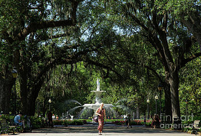 Studio Grafika Science - Fountain at Forsyth Park Savannah Georgia by Wayne Moran