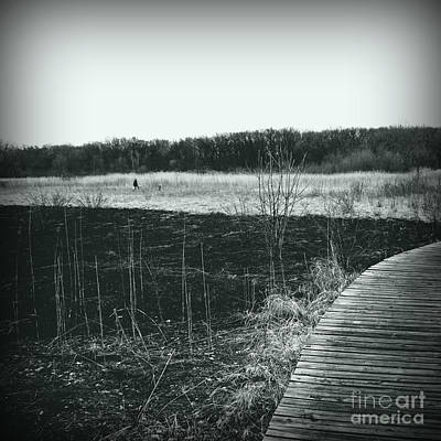Frank J Casella Royalty-Free and Rights-Managed Images - Freedom in the Wetlands Brush - Silver Square by Frank J Casella