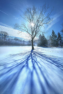 Royalty-Free and Rights-Managed Images - From Earth to Sky by Phil Koch