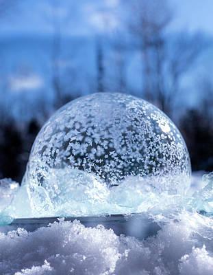 Lego Art - Frozen Soap Bubble in Winter by Sandra J