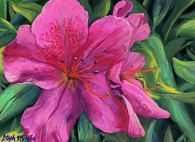 Painting - Fuchsia Azalea by Steph Moraca