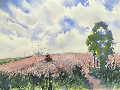 Painting - Furrows and Gulls by Glenn Marshall