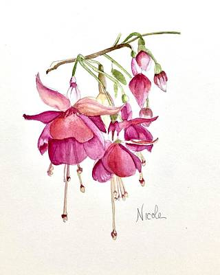Studio Grafika Science - Fuschia by Nicole Curreri