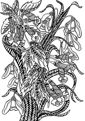 Animals Drawings - Galanthus by Jennifer Wheatley Wolf