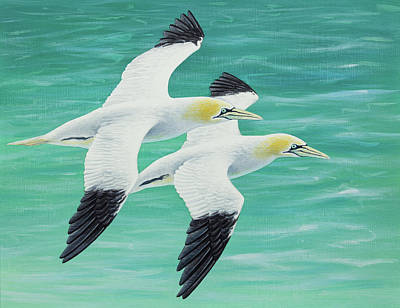 Painting - Gannets flying over the sea by Craig Austin