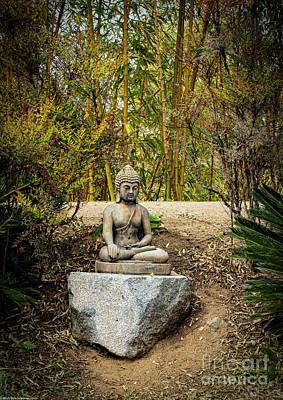 Latidude Image - Garden Buddha by Mitch Shindelbower