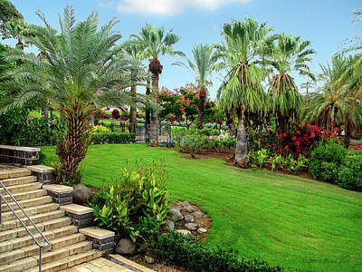 Modern Sophistication Beaches And Waves - Gardens at Mount of Beatitudes Israel by Brian Tada