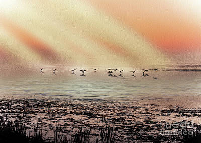 A White Christmas Cityscape - Geese Landing On Lake by Anthony Ellis