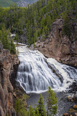 Pasta Al Dente - Gibbon Falls Yellowstone National Park by Joan Carroll