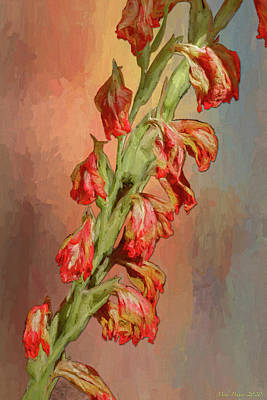 Popular Rustic Neutral Tones - Gladiolas flowers 778 by Mike Penney