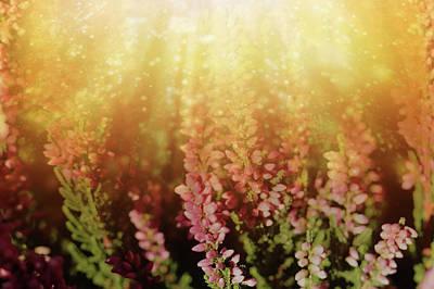 1920s Flapper Girl - Glorious Light On Winter Flowers by Johanna Hurmerinta