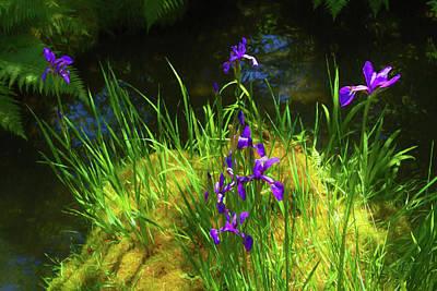 Polaroid Camera - Glorious Purple Iris  by Bonnie Follett