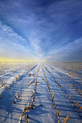 Royalty-Free and Rights-Managed Images - Go to Sleep till Summer Comes Again by Phil Koch