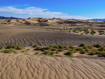 Kitchen Collection - Gobi Desert - Mongolia by Julie A Murray