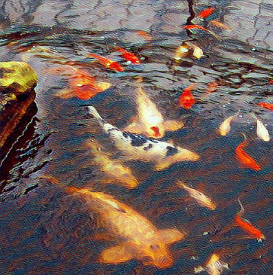 Modern Man Music - Gold Fish and Koi Waters by PhotoArtLJR