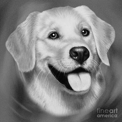 Animals Paintings - Golden Retriever  by Gull G