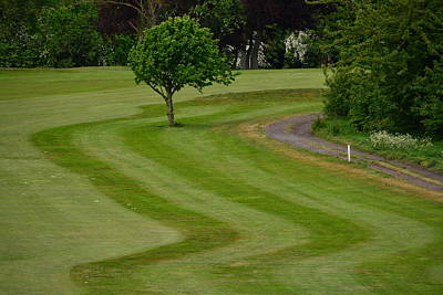 Sports Royalty-Free and Rights-Managed Images - Golf course by Stewart Geddes
