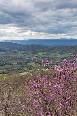 Rights Managed Images - Gooney Run Overlook 3 Royalty-Free Image by David Beard