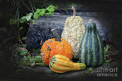 Garden Tools - Gourds at my Door by Karen Adams