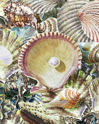 Kim Fearheiley Photography - Grand Seashell Collection Painting I by Irina Sztukowski