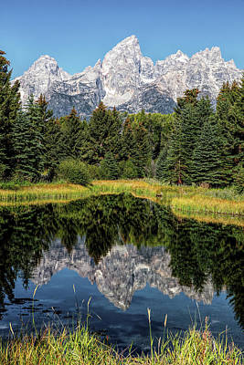 Vermeer Rights Managed Images - Grand Teton Reflection Royalty-Free Image by Stephen Stookey