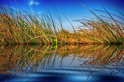 Advertising Archives - Grass, Water and Sky by Anthony M Davis