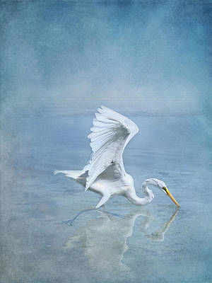 Birds Rights Managed Images - Great Egret Royalty-Free Image by Jill Love Photo Art
