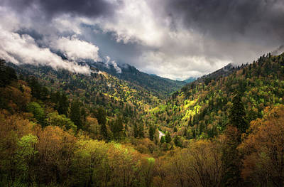 Landscapes Royalty-Free and Rights-Managed Images - Great Smoky Mountains National Park Gatlinburg Tennessee Spring Landscape by Dave Allen