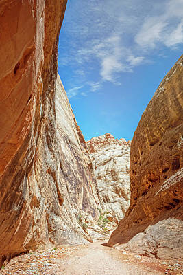 Superhero Ice Pop - Grand Wash Capitol Reef National Park Utah II by Joan Carroll
