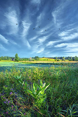Royalty-Free and Rights-Managed Images - Green Day by Phil Koch