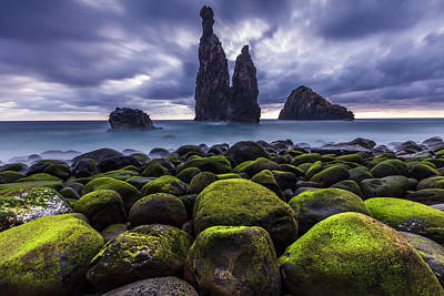 Claude Monet - Green Stones by Evgeni Dinev