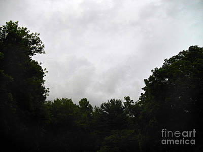 Frank J Casella Royalty-Free and Rights-Managed Images - Green Tree Line Under The Stormy Clouds by Frank J Casella