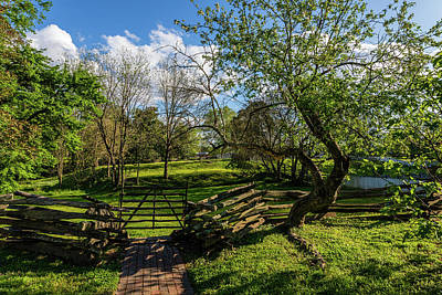 Lucille Ball Royalty Free Images - Green Virginia Pasture Scene Royalty-Free Image by Rachel Morrison