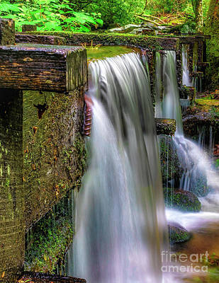 Animal Portraits - Grist Mill Water Flume by Nick Zelinsky