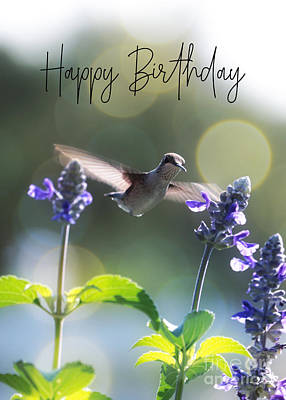 Abstract Trees Mandy Budan - Happy Birthday Hummingbird Greetings by Carol Groenen