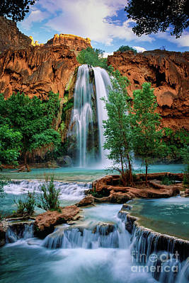 Landscapes Royalty-Free and Rights-Managed Images - Havasu Cascades by Inge Johnsson