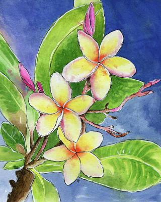 Painting - Hawaiian Plumeria Flower by Beth Taylor