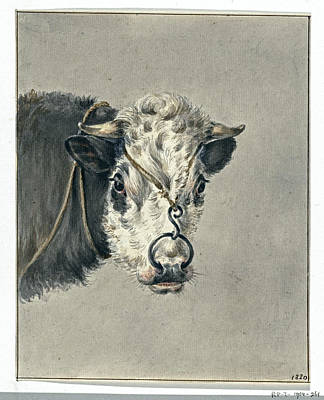 Granger - Head of a cow with a ring through the nose from the front Jean Bernard 1820 by Artistic Rifki