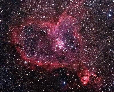 Photograph - Heart Nebula by Willard Sharp