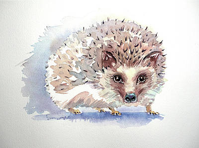 Royalty-Free and Rights-Managed Images - Hedgehog by Luisa Millicent