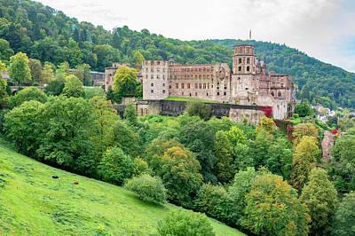 Parks - Heidelberg Castle by Pelo Blanco Photo