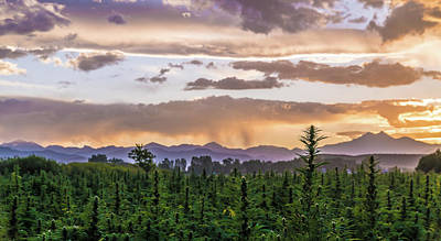 Landscapes Royalty-Free and Rights-Managed Images - Hemp Sunset 83 by Hemp Landscapes
