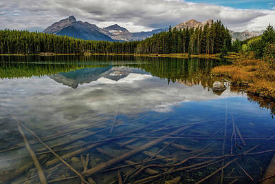 Achieving - Herbert Lake by Jerry Fornarotto