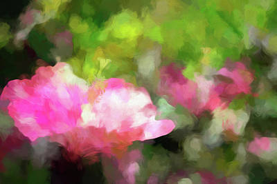 Amy Weiss - Hibiscus Garden Abstract by Francis Sullivan